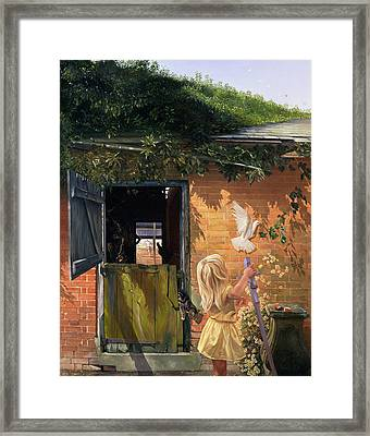 Summer Reflection Framed Print by Timothy  Easton