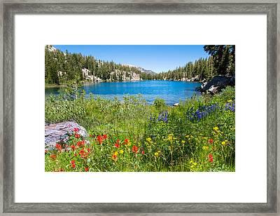 Summer Splendor At T J Lake Framed Print by Lynn Bauer