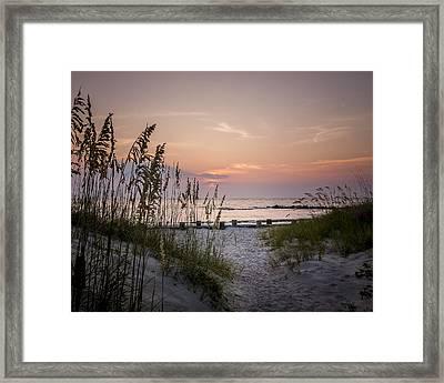 Summer Sunrise Framed Print by Steve DuPree
