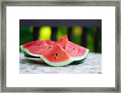 Summer Treat Framed Print by Shelby  Young