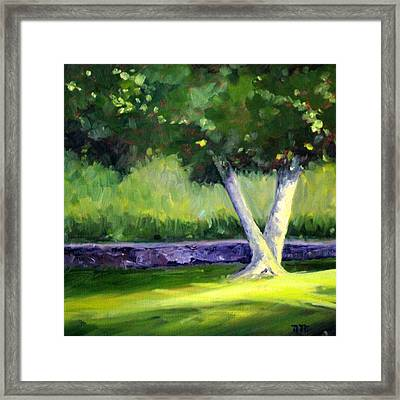 Summer Tree Framed Print by Nancy Merkle