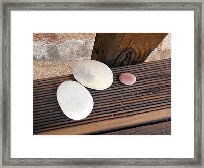 Summer Trio Framed Print by Jayne Abbott Ribeiro