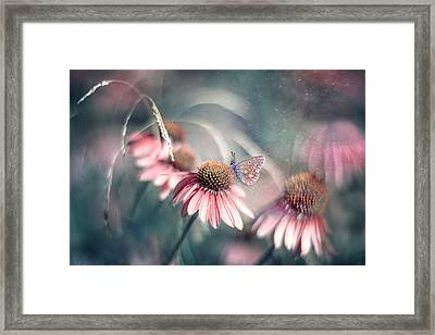 Summer Wonderland Framed Print by Magda  Bognar