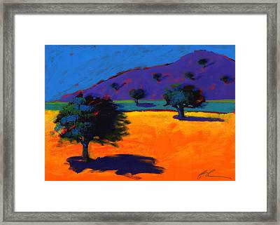 Summertime Framed Print by Paul Powis