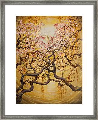 Sun And Sakura Framed Print by Vrindavan Das