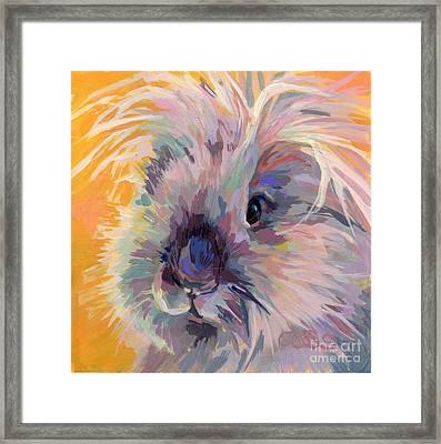 Sun Bun Framed Print by Kimberly Santini