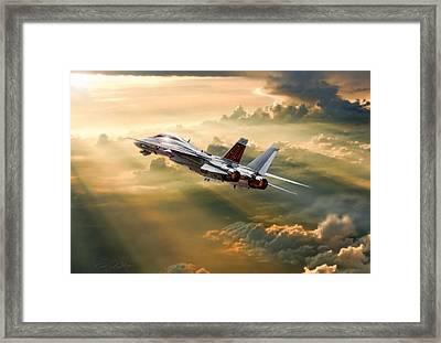 Sun Catcher Tomcat Framed Print by Peter Chilelli