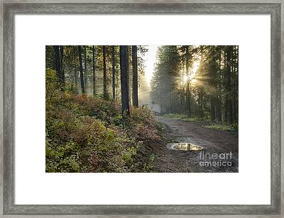 Huckleberry Road Framed Print by Idaho Scenic Images Linda Lantzy