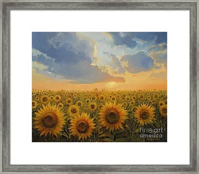 Sun Harmony Framed Print by Kiril Stanchev