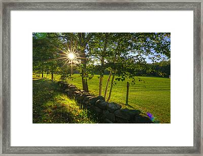 Sun Rays  Framed Print by Donna Doherty