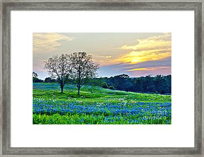 Sun Setting On Another Texas Day Framed Print by Katya Horner