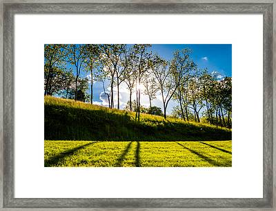 Sun Shining Through Trees And Shadows On The Grass At Antietam National Battlefield Maryland Framed Print by Jon Bilous