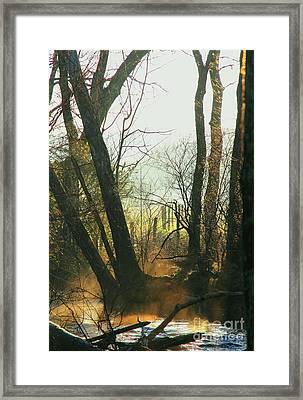 Sun Splash Framed Print by Douglas Stucky