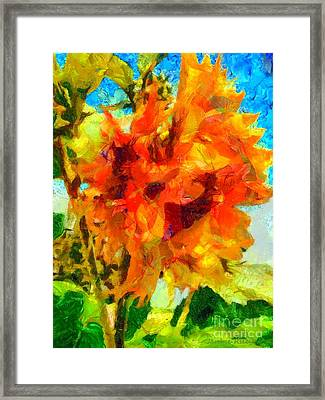 Sunflower Afternoon Impressions Framed Print by Janine Riley