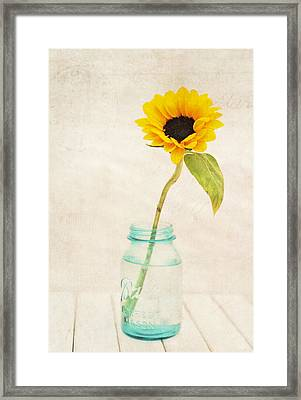 Sunflower Ball Mason Framed Print by Terry DeLuco