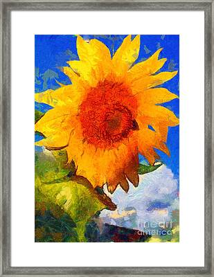 Sunflower - Bee Happy Framed Print by Janine Riley