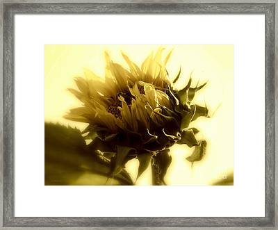 Sunflower - Fare Thee Well Framed Print by Janine Riley