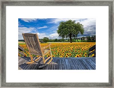 Sunflower Farm Framed Print by Debra and Dave Vanderlaan