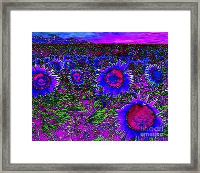 Sunflower Field 20130730m128 Horizontal Framed Print by Wingsdomain Art and Photography