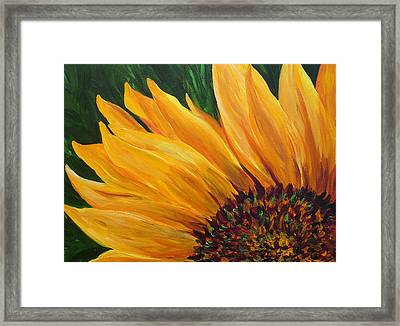 Sunflower From Summer Framed Print by Mary Jo Zorad