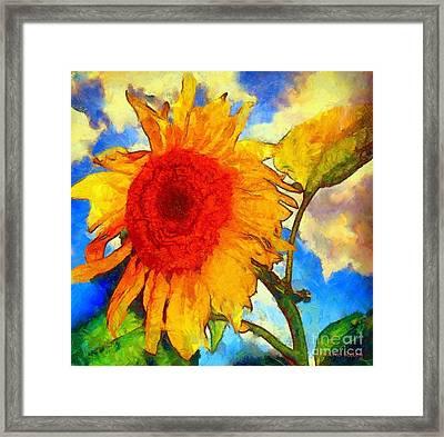Sunflower Shine Framed Print by Janine Riley