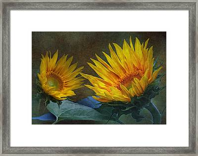 Sunflowers Framed Print by Angie Vogel