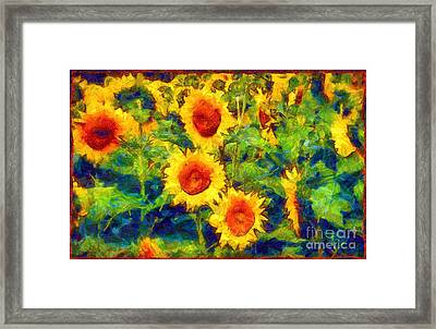 Sunflowers Dance In A Field Framed Print by Janine Riley