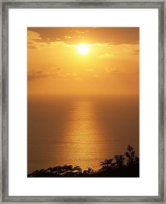 Sunlight Framed Print by Athala Carole Bruckner