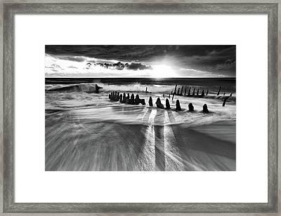 Sunlight Framed Print by Mel Brackstone
