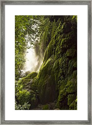 Gorman Falls Ray Of Light Framed Print by Jonathan Davison