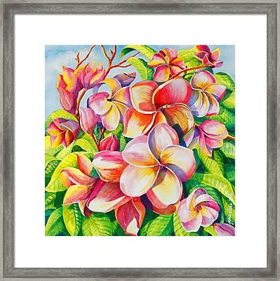 Sunlit Plumeria Framed Print by Janis Grau