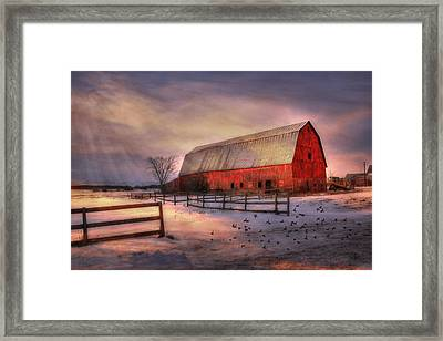 Sunny Afternoon Framed Print by David Simons