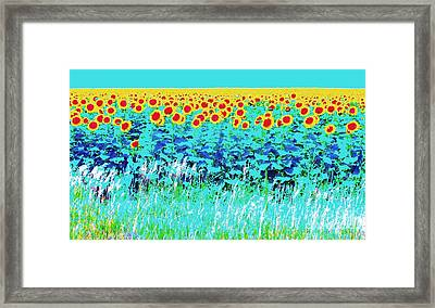 Sunny Kansas Framed Print by Ann Johndro-Collins