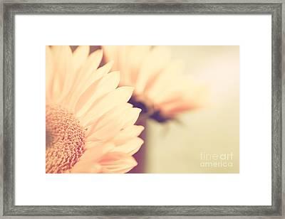 Sunny Side Up Framed Print by Lisa McStamp