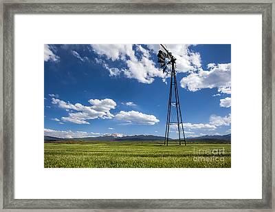 Sunny Side Up Framed Print by Jim Garrison
