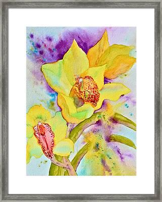 Sunny Splash Of Orchids Framed Print by Beverley Harper Tinsley