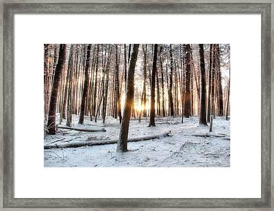 Sunrise Framed Print by Andrea Galiffi