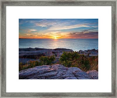 Sunrise At Otter Cliffs Framed Print by Darylann Leonard Photography