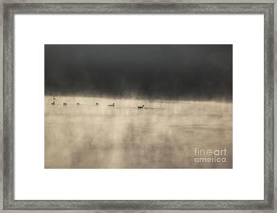 Sunrise Geese Framed Print by Melissa Petrey