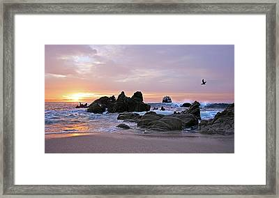 Sunrise In Cabo San Lucas Framed Print by Marcia Colelli