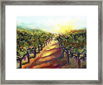 Sunrise In Napa Framed Print by Jen Norton