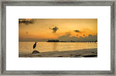 Sunrise On City Pier Framed Print by Darylann Leonard Photography
