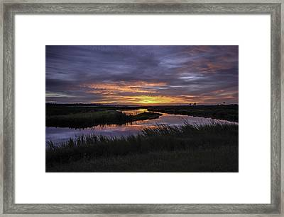 Sunrise On Lake Shelby Framed Print by Michael Thomas