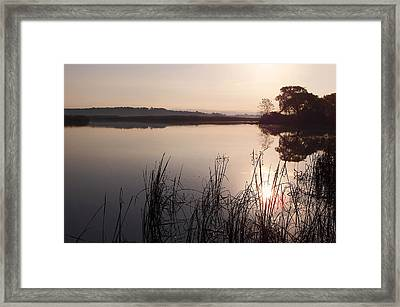 Sunrise On Meadow Framed Print by Kathi Mirto
