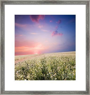 Sunrise Over Flower Land Framed Print by Michal Bednarek