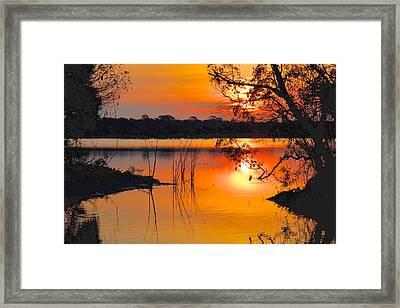 Sunrise Over Orlando Wetlands Framed Print by AnnaJo Vahle