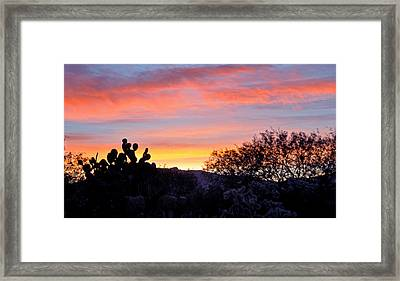 Sunrise Over The Sonoran Desert Framed Print by Jon Van Gilder