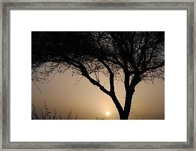 Sunrise Silhouette 1 Framed Print by Edward Curtis