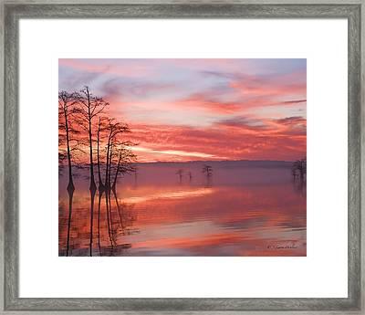 Sunrise Through The Fog Framed Print by J Larry Walker