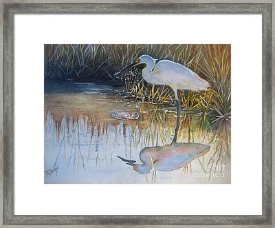 Sunset And Snowy Egret Framed Print by Patricia Pushaw
